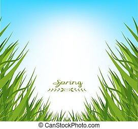 spring fresh grass background