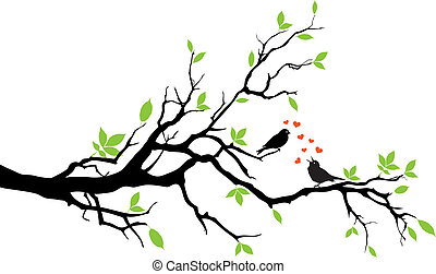 love birds sitting on a tree, vector