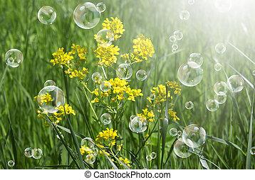 Spring solar nature background