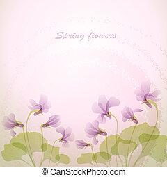 Spring violet flowers. Tender background.