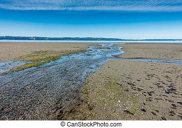 Stream And Shoreline 2