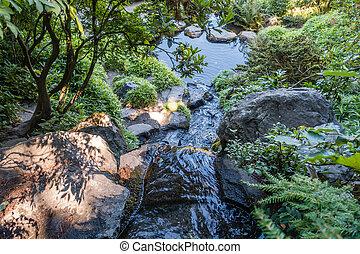 Stream Flows Into Pool 2