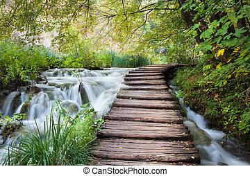 Wooden path along the stream in forest