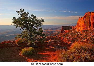 Sunrise in Canyonlands National Park, Utah, USA