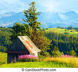 Sunshine above summer mountain country field