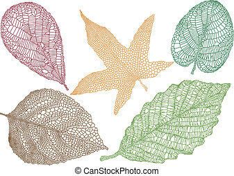 textured autumn leaves, vector background
