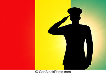 The Guinean flag