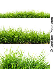 three style fresh spring green grass