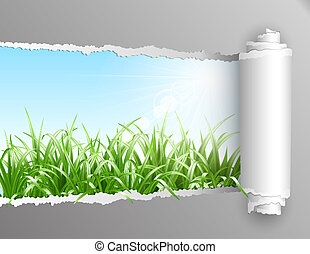 Torn paper with grass background.