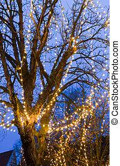 Tree with fairy lights