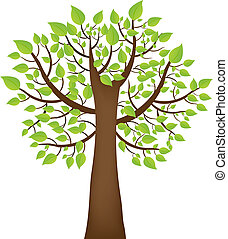 Tree With Green Leafage, Isolated On White Background, Vector Illustration