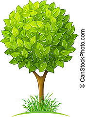 tree with green leaves vector illustration isolated on white background