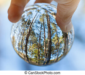 Trees reflected in glass sphere held by human hand - ecology in our hand concept, shallow depth