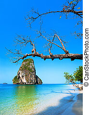 Tropical island view. Thailand nature landscape. Railay beach, Krabi