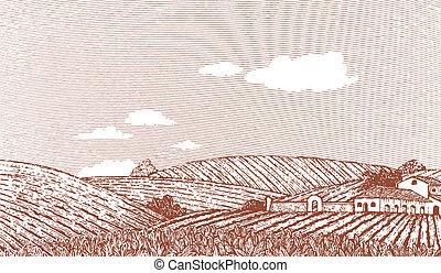 Woodcut style illustration of an Italian or Napa Vally style landscape.
