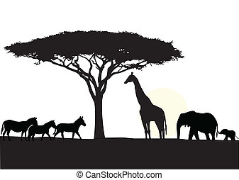 Vector Illustration Of Africa silhouette background