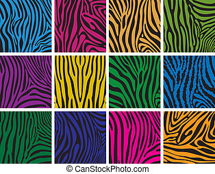 vector set of colorful skin textures of zebra