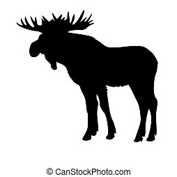 vector silhouette moose
