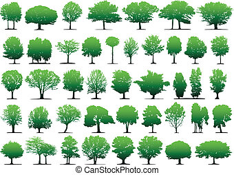 Vector trees - This image is a vector illustration and can be scaled to any size without loss of resolution