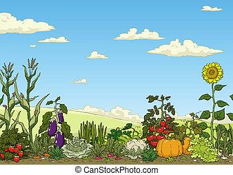 Landscape with vegetable garden bed vector illustration