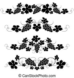Decorative elements from the vine on a white background