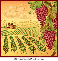 Retro vineyard landscape in woodcut style. Vector illustration with clipping mask.