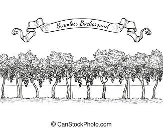 Vineyard seamless background. Vine sketch isolated on white. Hand drawn vector illustration.