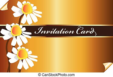 Vintage golden invitational card with daisy flowers vector image