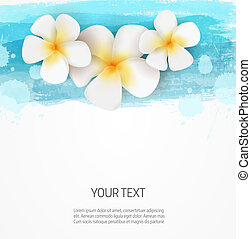 Watercolor lines and frangipani flowers background template