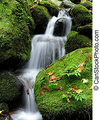 Beautiful waterfall between rocks covered by moss.