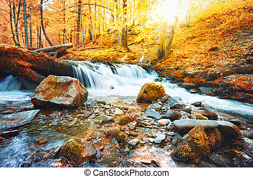 Waterfall on the river in forest