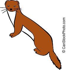 Weasel, illustration, vector on white background.