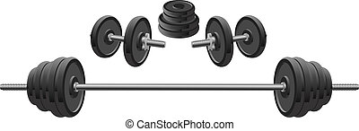 Illustration of weights including two dumbbells and one barbell used in weight lifting and fitness programs.