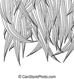 Hair Background
