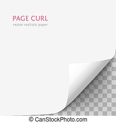 White paper with curled corner