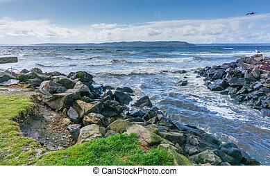 Windy Park Shoreline 2