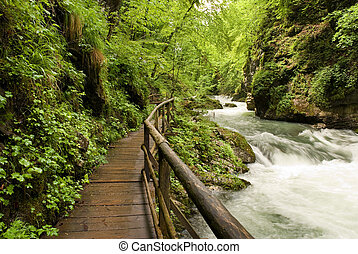 wooden path trough beautiful canyon with river