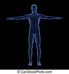 X ray human body on black background isolated